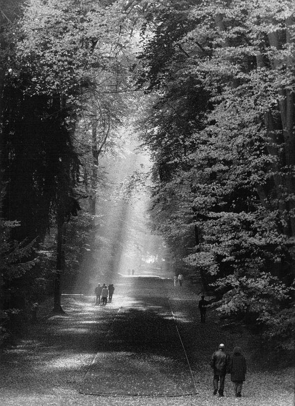 Düsseldorf, Schlosspark Benrath, 1981