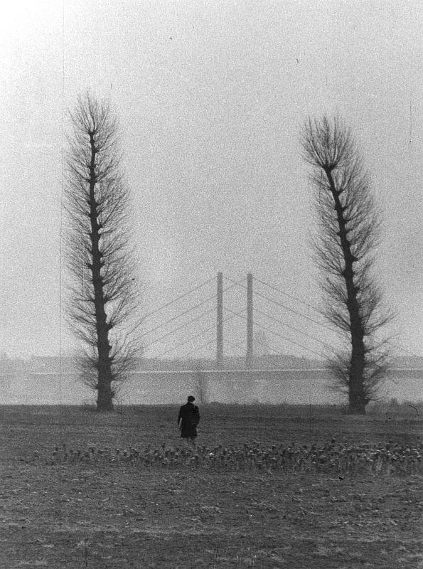 Düsseldorf, Oberkassler Rheinwiesen, 1960